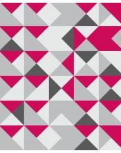 Papier Peint Rapsberry Geometric
