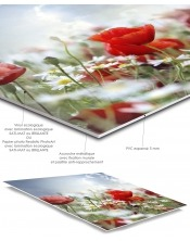 Ma photo personnalisée sur PVC 5mm