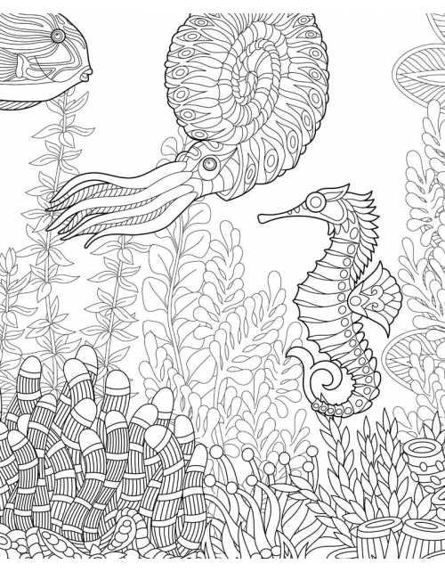 Coloriage - Zen Sea