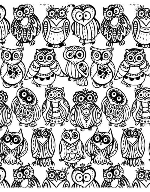Coloriage - Chouettes
