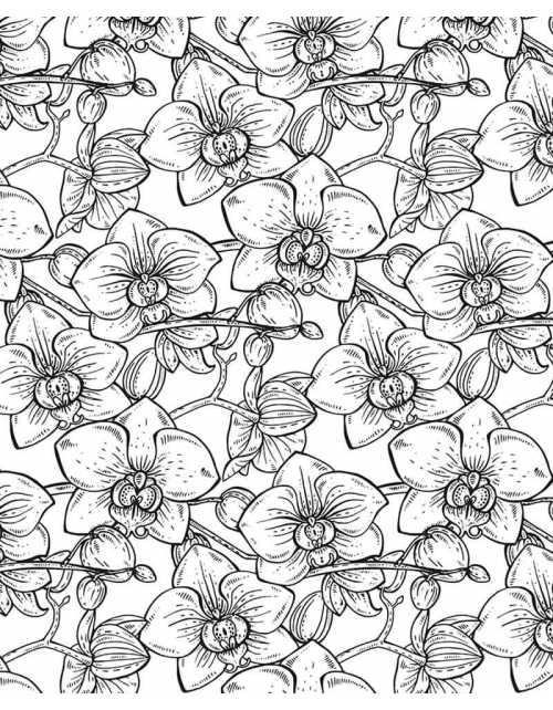 Coloriage Géant - Orchidées