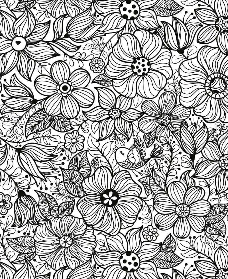 Coloriage - Fleurs et Oiseaux