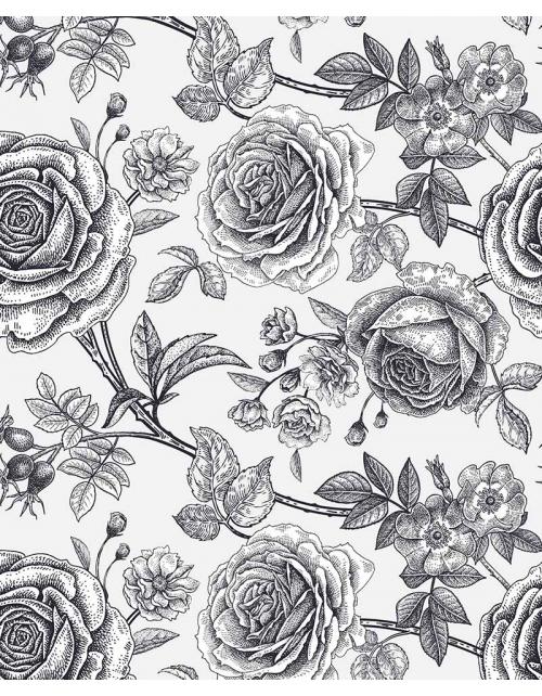 Papier Peint Rose Noir et Blanc - Pilou et Lilou