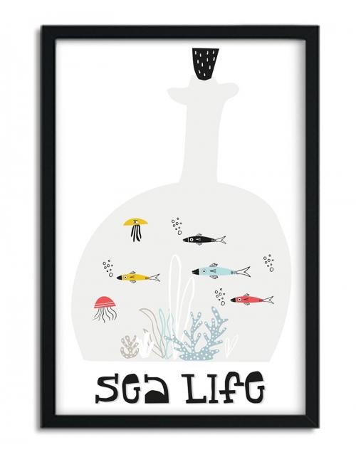 Affiche Sea Life